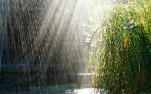 6992961-rainy-day